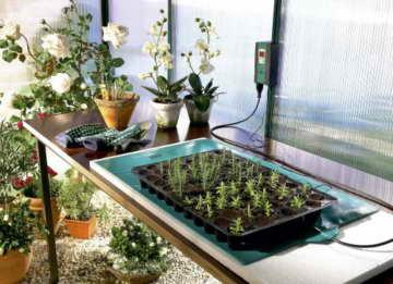 Bio Green Wärmeplatte, grün, flexibel, 25 x 35 cm, - 2