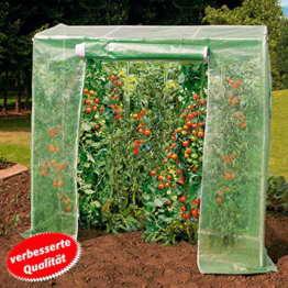 Gärtner Pötschke Tomatenhaus - 1