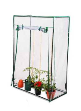 Lacewing, 100cm x 50cm PVC Tomaten-Gewächshaus - 1