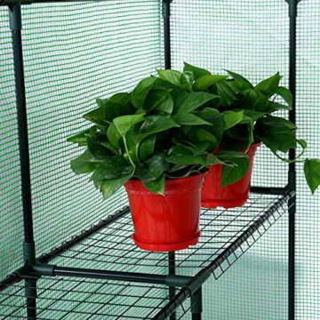 Songmics Foliengewächshäuser Tomatenhaus mit 130 g/m² PE 143 x 143 x 195 cm GWP12L - 6