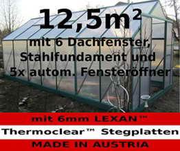 12,5m² PROFI Gewächshaus Glashaus Treibhaus inkl. Stahlfundament u. 6 Fenster, mit 6mm Hohlkammerstegplatten - (Platten MADE IN AUSTRIA/EU) inkl. 5 autom. Fensteröffner von AS-S - 1
