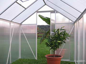 KOMPLETTSET: 7,05m² ALU Aluminium Gewächshaus Glashaus Tomatenhaus, 6mm Hohlkammerstegplatten - (Platten MADE IN AUSTRIA/EU) m. Stahlfundament, 2 Fenster mit 2 autom. Fensteröffner von AS-S - 6