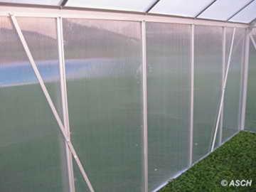 KOMPLETTSET: 7,05m² ALU Aluminium Gewächshaus Glashaus Tomatenhaus, 6mm Hohlkammerstegplatten - (Platten MADE IN AUSTRIA/EU) m. Stahlfundament, 2 Fenster mit 2 autom. Fensteröffner von AS-S - 8