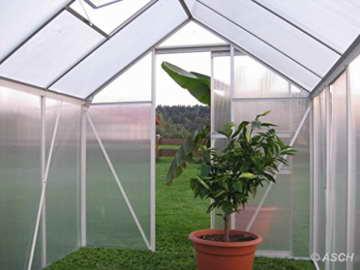 KOMPLETTSET: 7,05m² ALU Aluminium Gewächshaus Glashaus Tomatenhaus, 6mm Hohlkammerstegplatten - (Platten MADE IN AUSTRIA/EU) m. Stahlfundament 2 Fenster und 1 autom. Fensteröffner von AS-S - 6