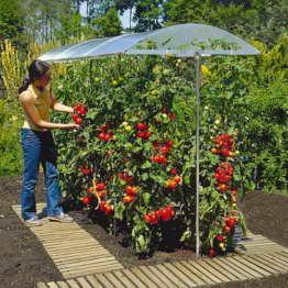 Ing. G. Beckmann KG PSN4 Schutzdach für Pflanzen Größe 4 400 x 112 cm -