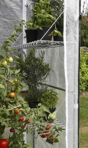 Bio Green PTF 100 Patioflora Tomatenhaus 220 x 100 x 80 cm für Terasse und Garten, 4 Jahreszeiten -