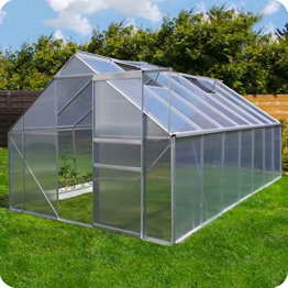 Aluminium Gewächshaus mit Fundament verschiedene Modelle Treibhaus Garten Pflanzenhaus Alu Tomatenhaus (250x550, Silber) -