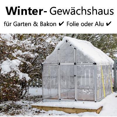 winter gew chshaus pflanzen im gew chshaus berwintern. Black Bedroom Furniture Sets. Home Design Ideas